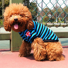 Dog Cat Clothes Clothing