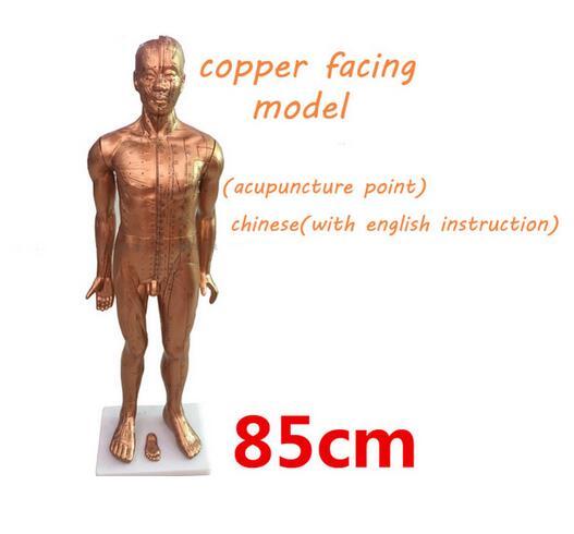 Pur cuivre galvanoplastie PVC plastique enseignement acupuncture point modèle traditionnel chinois corps médical modèle 85 cm modèle humain