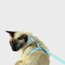 Free Shipping Cat Collar  Pet Breakaway Quick Release Small Tag Harness QY018 Christmas