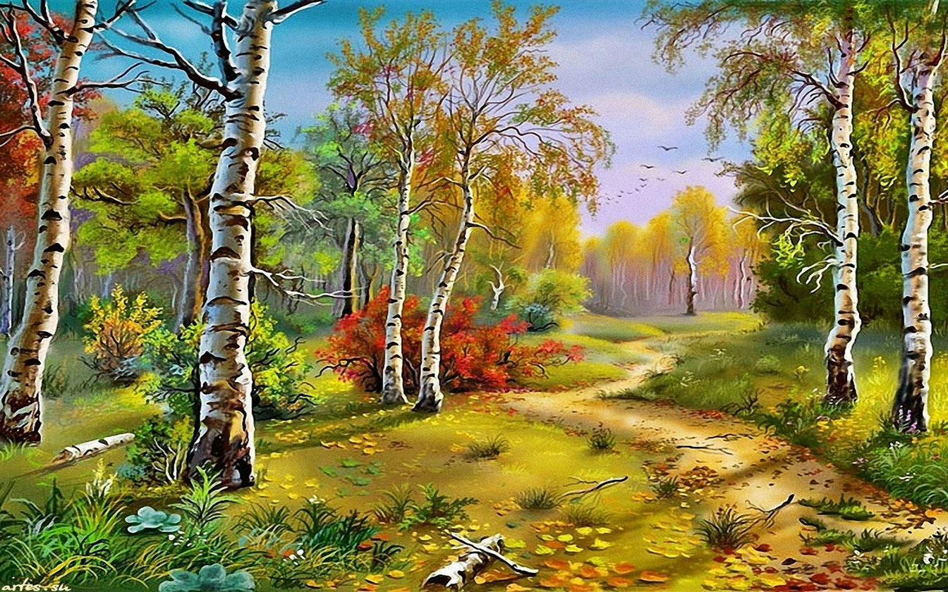Autumn Birch Forest tree road backgrounds  High quality Computer print scenic backdrop|Background| |  - title=