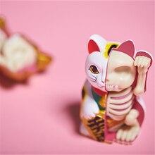 4D белый деньги кот интеллект счастливый кот сборка игрушка перспективная анатомия модель DIY популярная научная техника