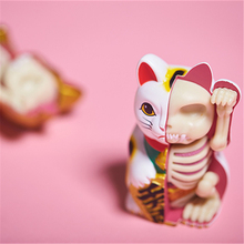 4D White money cat Intelligence Lucky cat Assembling toy Perspective Anatomy Model  DIY Popular Science Appliances цена в Москве и Питере