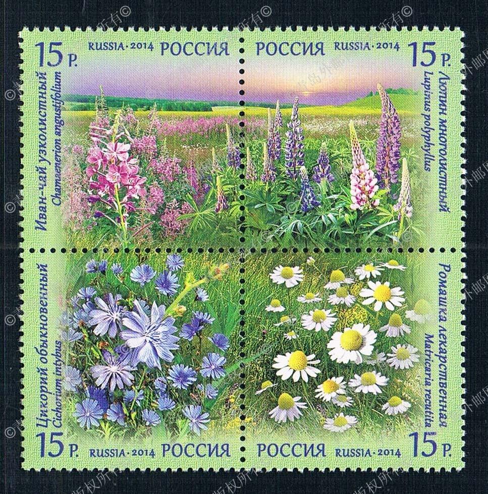 RU1443 Russia 2014 field flower stamps 4 new 0419 mystery mmc 1443