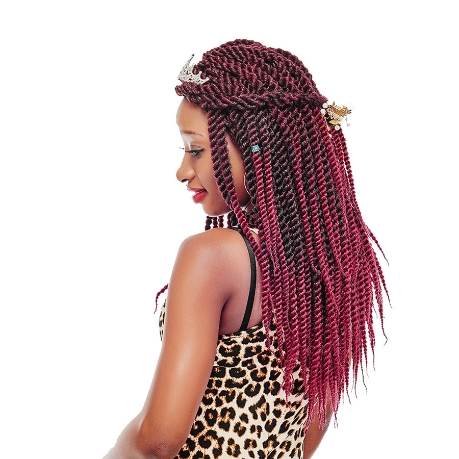 AliRobam Ombre Crochet Braids 12Strands/Pack 18Inch Senegalese Twist Hair Synthetic Braiding Hair Extensions Havana Twist Box