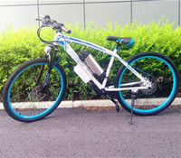 High Quality Electric Vehicle 26 Inch Electric Bicycle 350W 500W Mountain Bike High Carbon Steel Frame