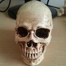 ФОТО small skull new halloween decoration props realistic a terrorist than a human skull resin skull ornament