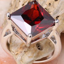 Garnet Fabulous Red Stone