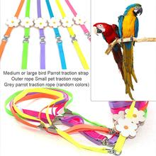 Parrot Leash Outdoor Carrying Traction Rope Anti-chew Bite Resistance Nylon Webbing Strap For Medium Large Bird Small Pets