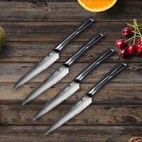 SUNNECKO 4PCS Kitchen Knife Set 5 inch Steak Knives Japanese Damascus VG10 Steel Sharp Blade 60HRC G10+S/S Handle Cutting Tools