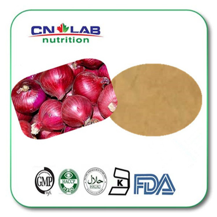 100% Natural Plant Extract Onion P.E. 50% Quercetin hot sale pure plant extract quercetin dihydrate 95