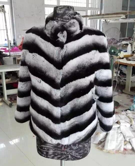 Կարճ ոճ Բնական Chinchilla Rex նապաստակի - Կանացի հագուստ - Լուսանկար 2