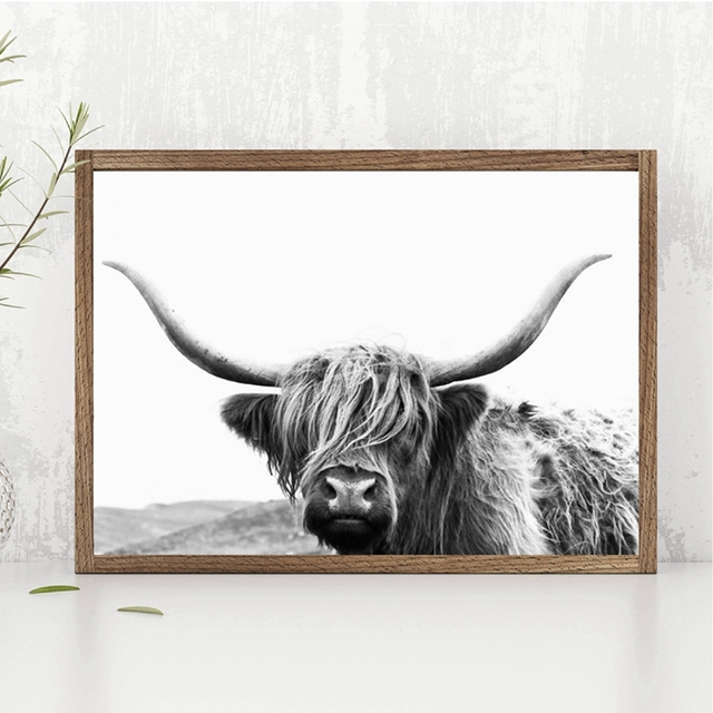 a9660ad3c3f Highland Cow Canvas Art Print and Poster Farm Animal Highland Bull  Photography Canvas Painting Picture Modern Wall Art Decor