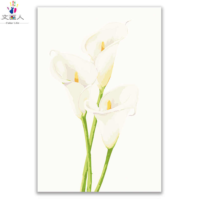 Coloring By Numbers Calla Lily Flowers Diy Paintings Pictures Draw