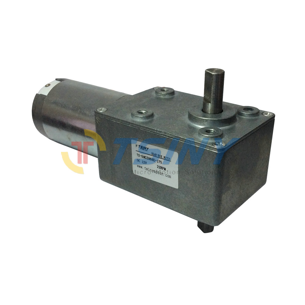 DC Gear Motor 12V 22rpm Low Speed Double Shaft Diameter 10mm Electric Worm Reducer Motor for Engine Robot Model