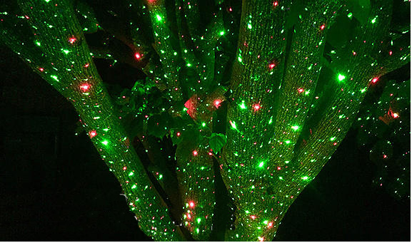 ip65 rgb dynamic garden outdoor laser lightchristmas decoration laser lightstar shower laser