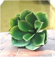 Home Decoration plastic Aloes green trees silk flowers DIY home wedding house MA1687