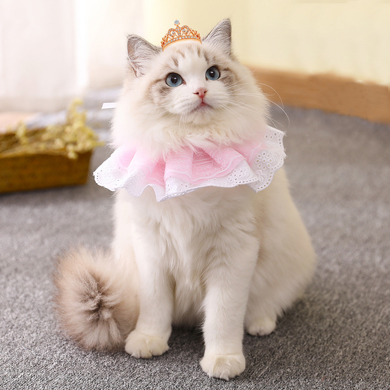 @HE New Cute Lace Puppy Scarf Collar Cat Dog Pet Turban Bib Necklace Tie Bow Wedding Accessories