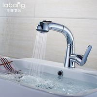 Silver Single Handle Basin Faucet Mixer Pull Out Basin Tap Single Hole 360 Rotate Copper