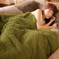 180*200cm Thicken Fleece Blanket On The Bed Queen Size MicroFiber Plush Mantas E Cobertor De Casal Plush Blanket Winter Warm