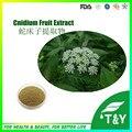 Травяные дополнение повышение Cnidium Monnieri Экстракт/cnidium monnieri фруктовый порошок экстракта 400 г