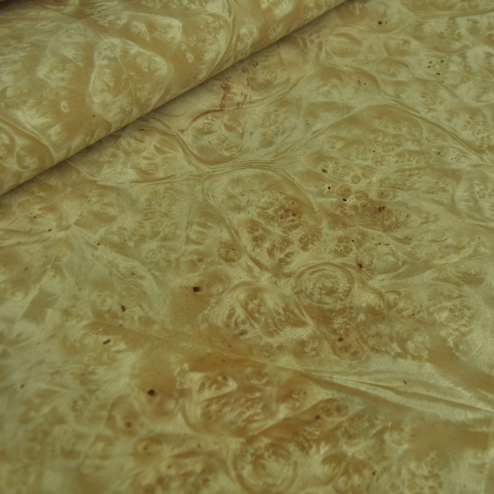 Natural Burl Veneer Golden Camphor