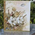 7 дюймов скребок albuns комплект pagan с супер модели intestinal альбома, возможно, положить 200 фотографий