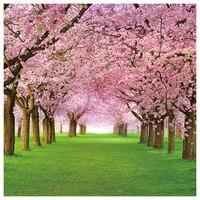 EDT-Vinil Kiraz Çiçeği Sokak ve Otlar Arka Planında 2.1*1.5 M (7 * 5ft) Fotoğraf Arka fotoğraf Sahne Stüdyo veya Sahne için
