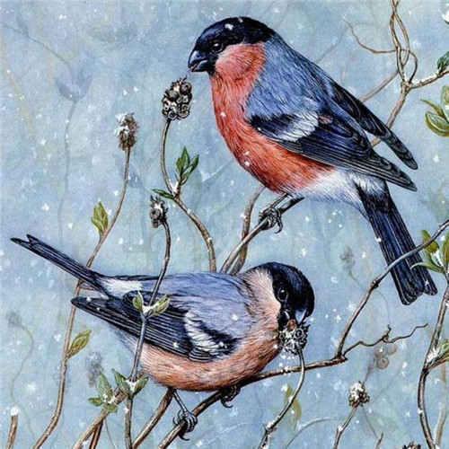 HUACAN-Diamond-Embroidery-Animals-5D-DIY-Diamond-Painting-Birds-Cross-Stitch-Picture-Of-Rhinestone-Paint-With.jpg_640x640 (9)