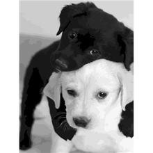 Yikee Алмазная картина животные собаки вышивка крестом diy мозаика