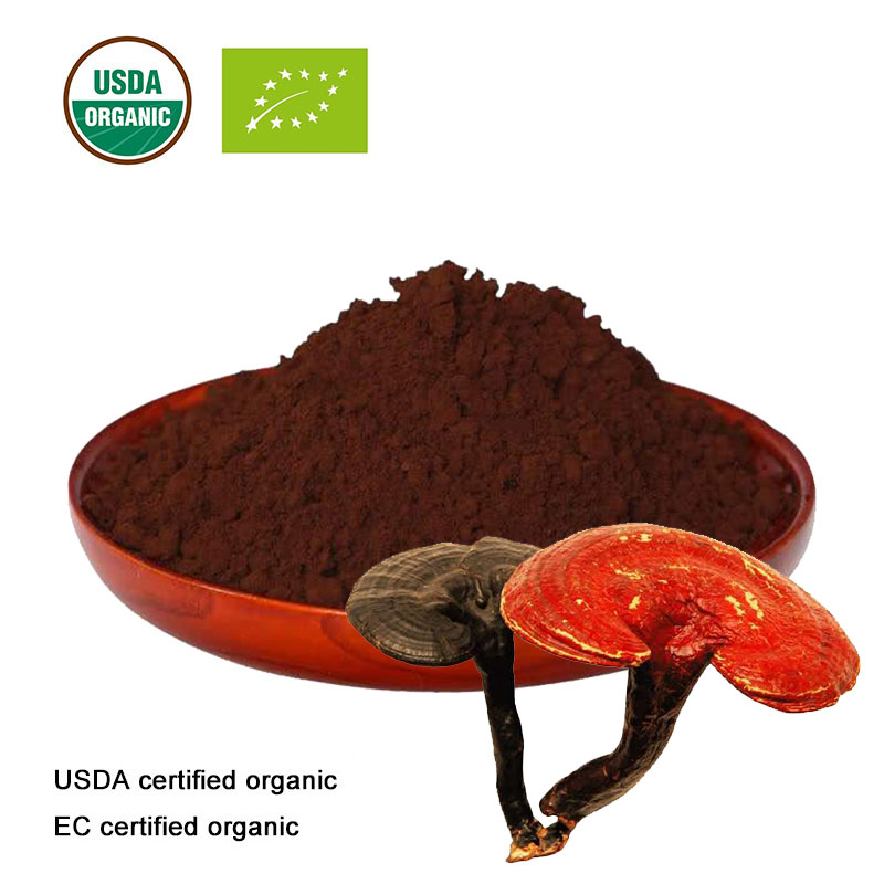 USDA And EC Certified  Organic Reishi Shell-broken Spore Powder  Ganoderma Lucidum Bacterium Powder