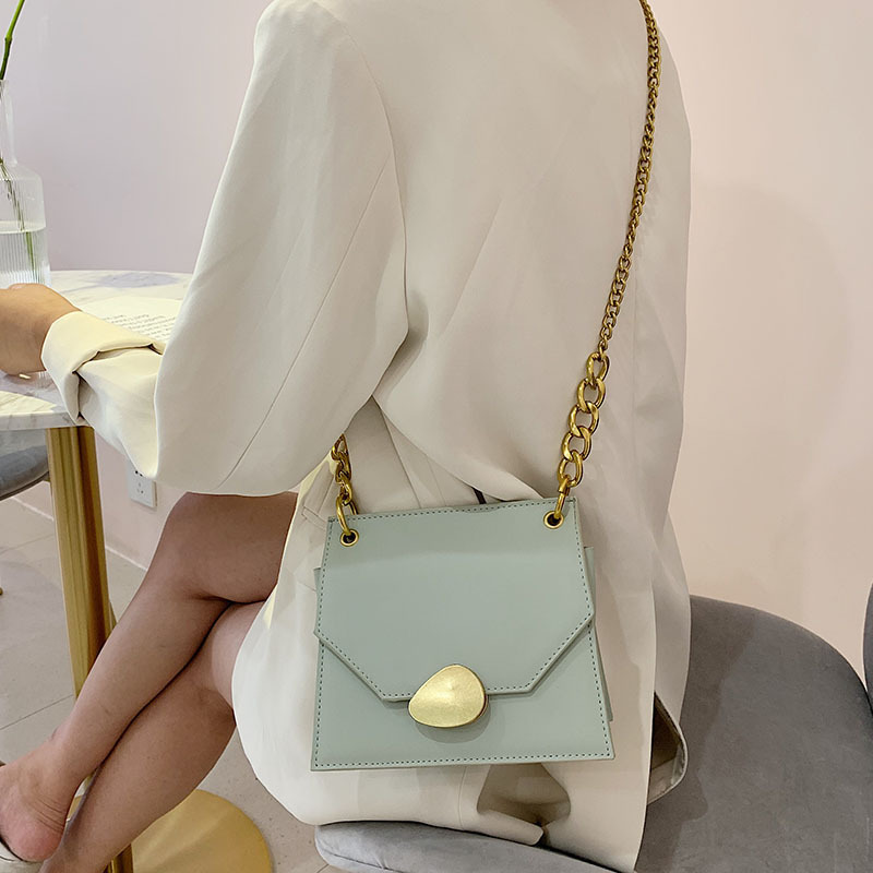 Sac Bags Leather Chain
