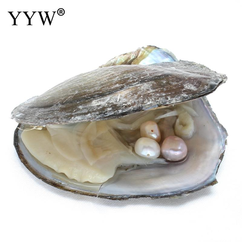 Have hole freshwater Pearls Vacuum-pack Oyster Wish Pearl Mussel Shell with Pearl Inside gift beads for jewelry making 8-9mm