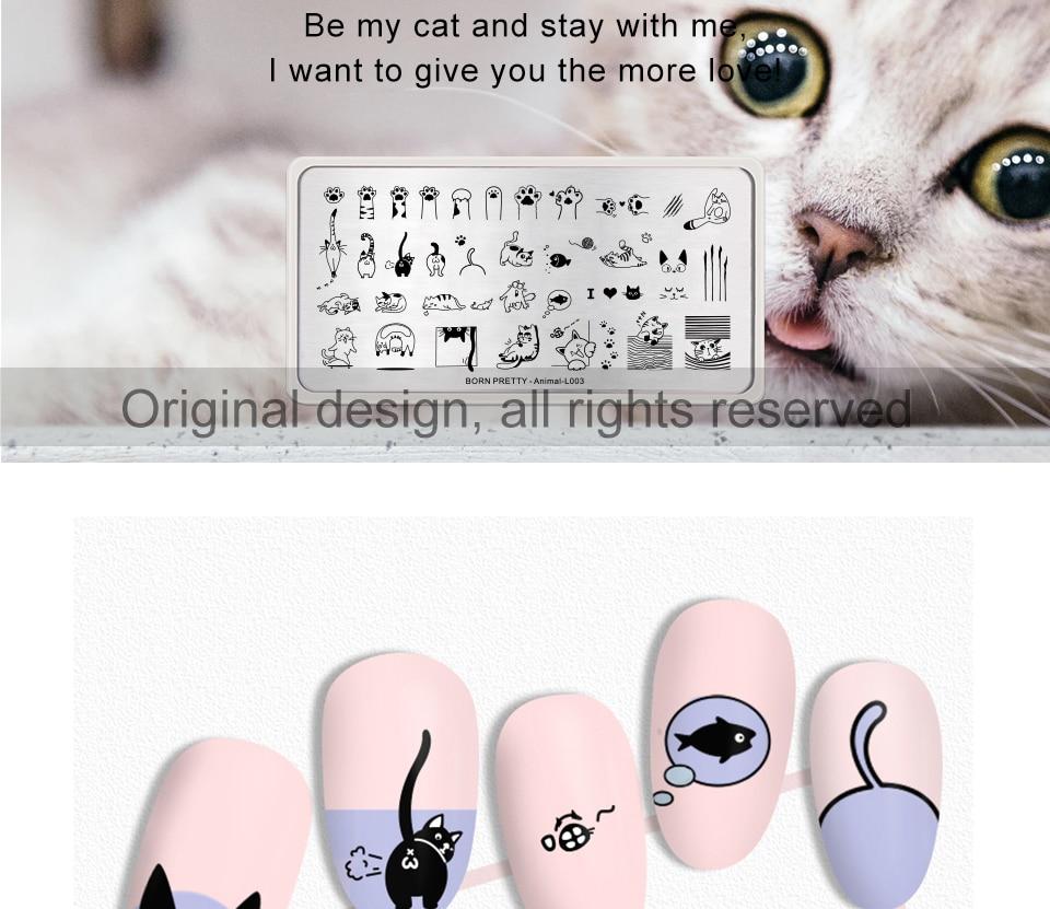 猫咪详情页英文_02