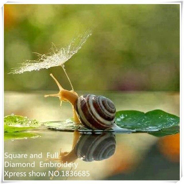 Sosteniendo paraguas caracoles, 5d bordado de diamantes, Diamante ...