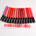 14 colors To Choose  Women Girls Matte Lipstick  Velvet High Quality Waterproof Long Lasting Lip Gloss Sexy Lipstick