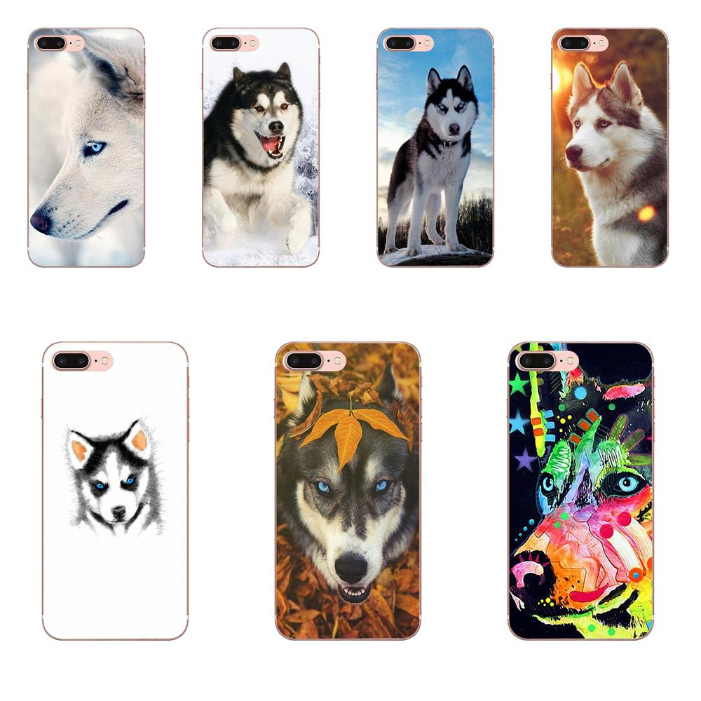 Lovely Dog <font><b>Siberian</b></font> <font><b>Husky</b></font> Pattern Hard Phone Case For LG Nexus 5 5X V10 V20 V30 V40 2017 2018 2019 image