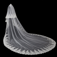 High quality 2019 Real Photos Two layers Long Bridal Lace edge Cathedral Shining Wedding Veil New Bridal Veil