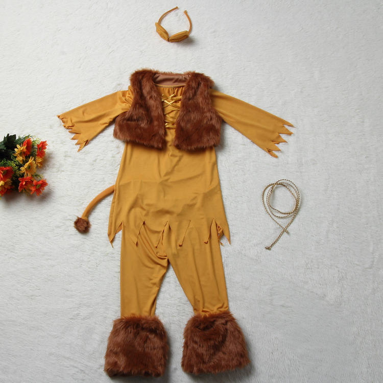 Lion King Costumes Kids Pixshark