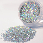 Holo Nail Glitter Powder Silver Holographic Sequins Shimmer Nail Glitter Dust Pigment Manicure DIY Nail Art Decorations