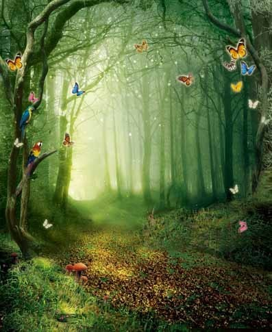5x7ft Beautiful Fairy Forest Painting Photo Studio Digital