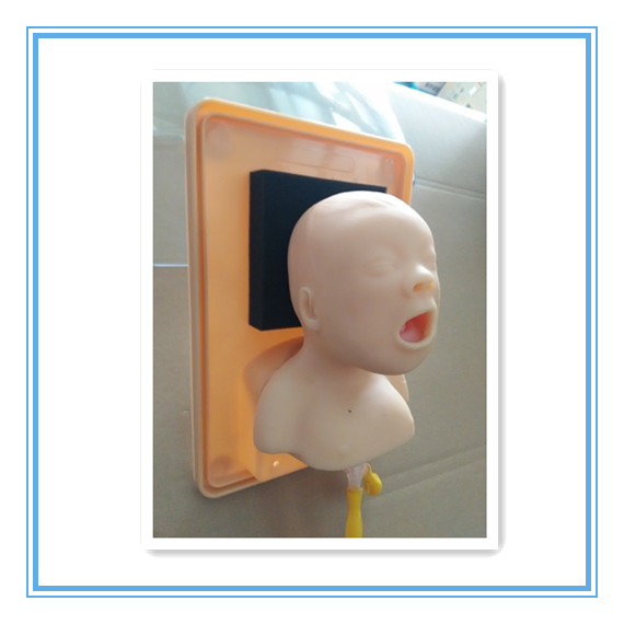 BIX-J2A Neonate Head For Trachea Intubation Model  W022 bix j3a advanced infant head for trachea intubation model wbw067