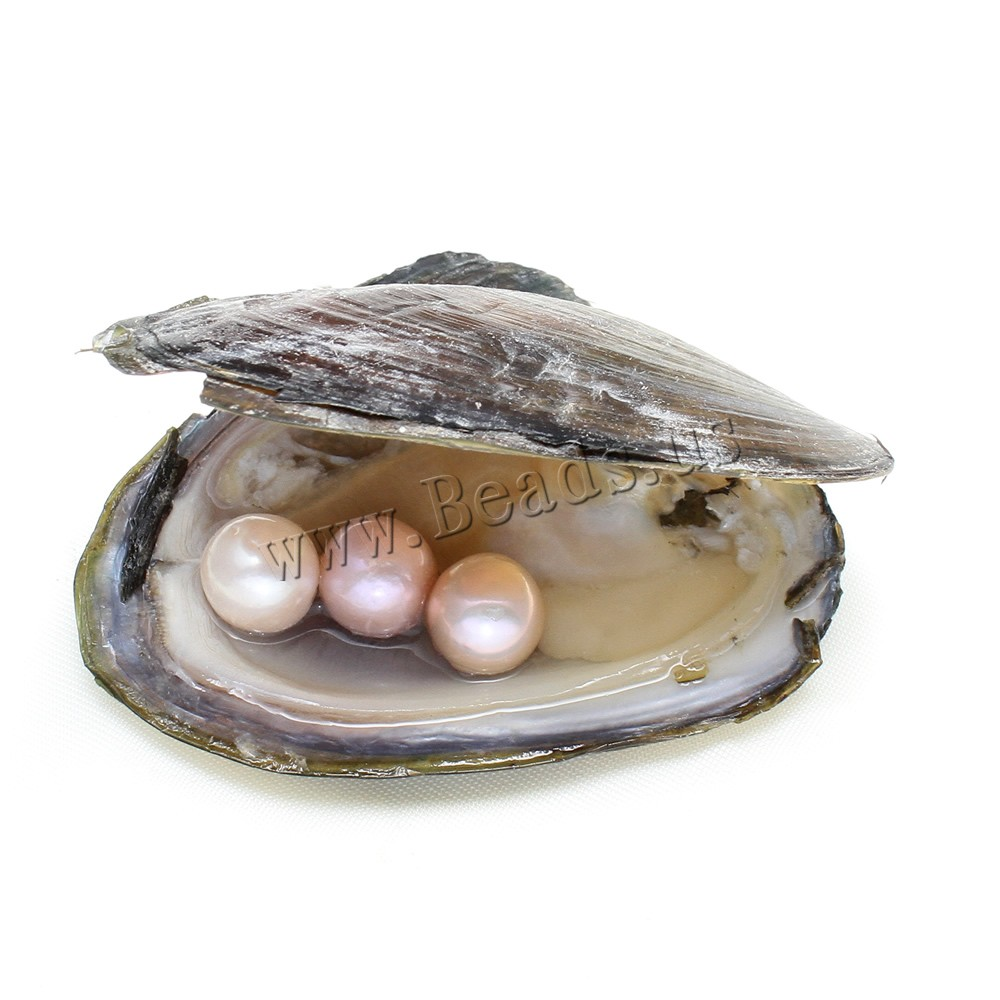Подарки shell
