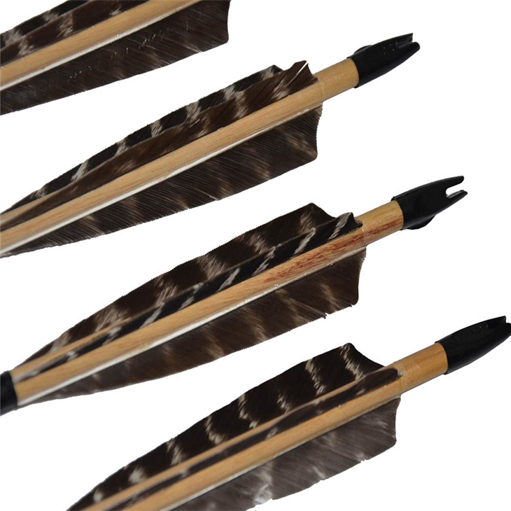 6 pcs black out nock colorful fletching wood shaft hunting white wood arrow target shooting bow arrow