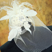 RSV42 Yiaibridal Custom Made Bridal Birdcage Veil
