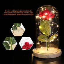 Preserved Light 20 LED USB Rose Flower with Glass Cover Base Valentines'Day Wedding Gift(China)