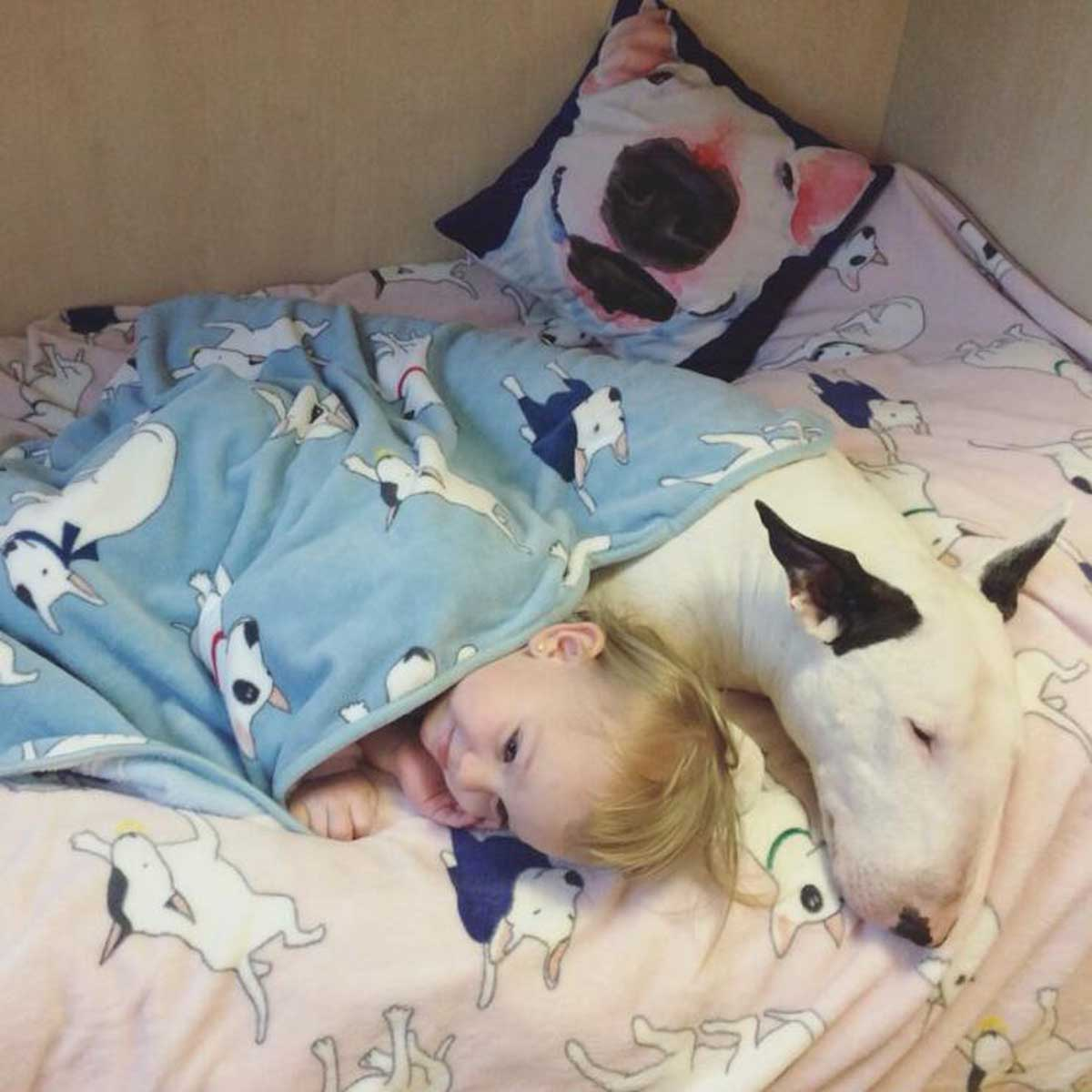 Fleece Bullterrier Dog Blankets Dog Bed Mats Pet Cat Blanket for Sofa bed Cover Kid 3 Size 2 Color