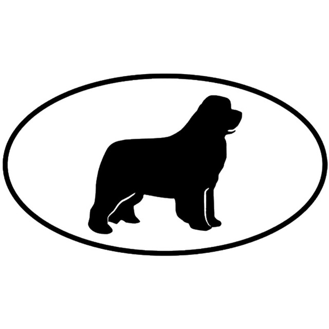 Newfoundland-Dog-Leather- ...