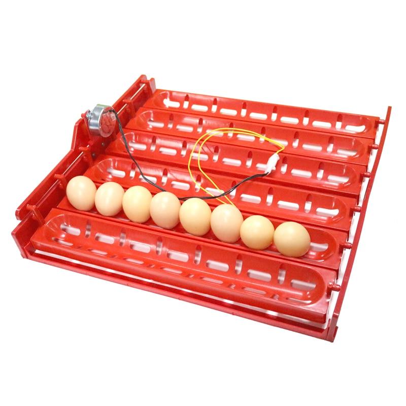 220V / 110V / DC 12V inkubatorius Pasukite kiaušinių dėklas Vištienos antis žąsų paukščiai Sudėtinis automatinis inkubatoriaus dėklas 41,7 x 43 cm