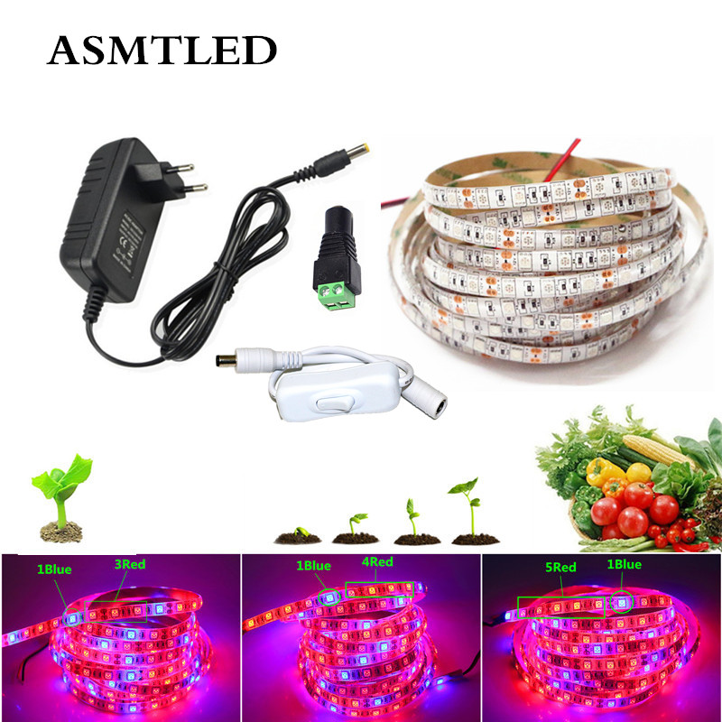 LED Plant Grow Light Full Spectrum Lamp Grow LED Strip Red Blue Hydroponic Apollo Phyto Lamp Grows Light+Power+Controller+switch