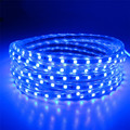 Wfleds New Waterproof 220V 5050 SMD led strip 60leds/m Flexible Strip Light with Power plug blue color Luz de tira flexible